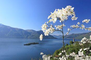 Raus aus dem Alltag und ab auf die sonnigsten Inseln der Schweiz!