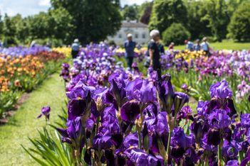 Es liegt was in der Luft: Frühling in Gärten, Pärken und Schlössern