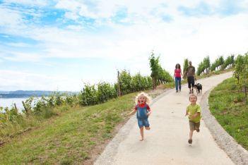 Vielfältige Wanderwege für Gross und Klein im Drei-Seen-Land