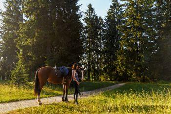 Profitieren Sie ab 2 Übernachtungen von einem Gratisausritt auf dem Rücken der Freiberger Pferde und durch die malerischen Landschaften des Juras.