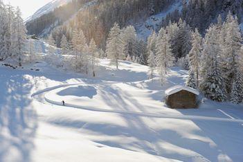 Auf den schönsten Loipen der Schweiz durch die Natur gleiten