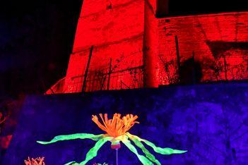 Kunstvoller, beleuchteter Spaziergang durch Murten vom 3. bis 28. März 2021