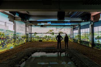 """Das Sommerprogramm von """"Murten leuchtet"""" mit einer Dreifachausstellung rund um die Schlacht von Murten"""