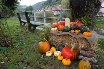 Geheime Rundgänge in Herbstfarben