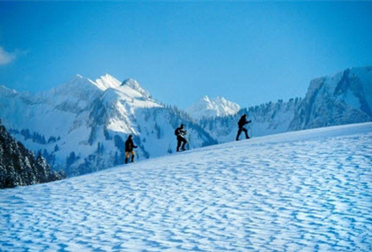 Charmey_Skigebiet_Schneeschuhlaufen.jpg