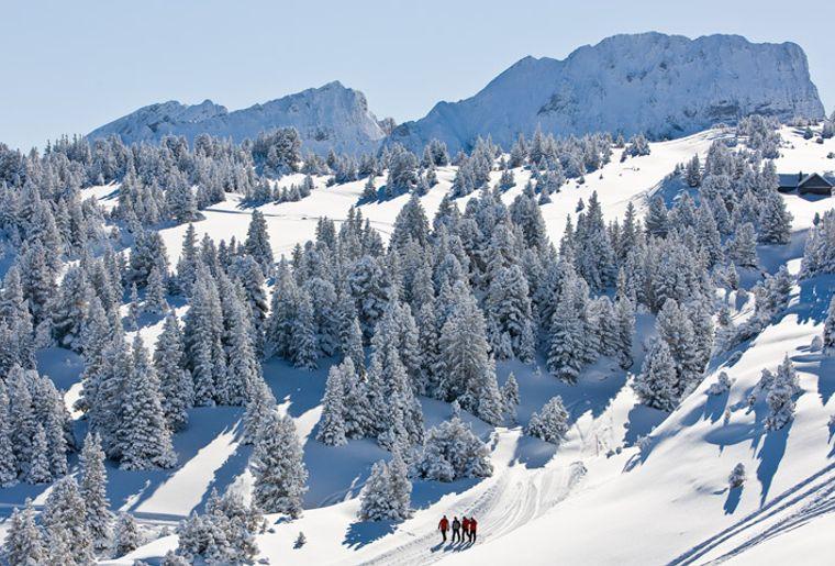 Winterwanderweg_Wildhaus_Marzils.jpg