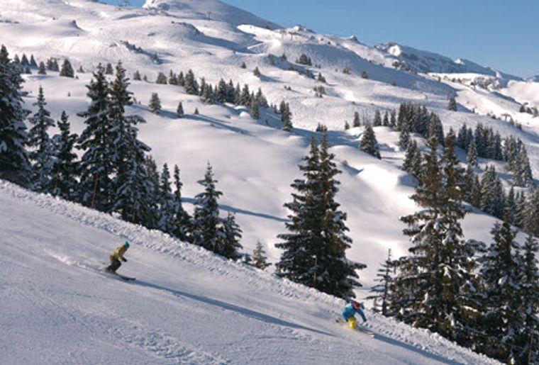 Les_Portes_Du_Soleil_Skifahrer.jpg