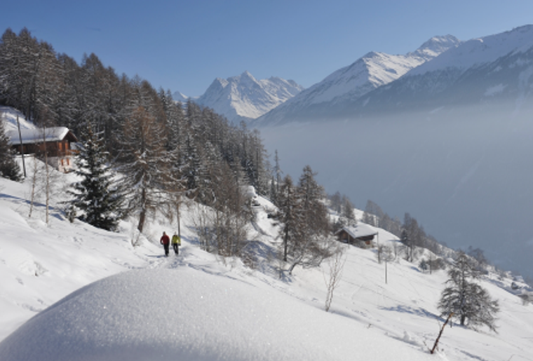 Winter_Bergpanorama_Skigebiete_EvolèneChemeuille.png