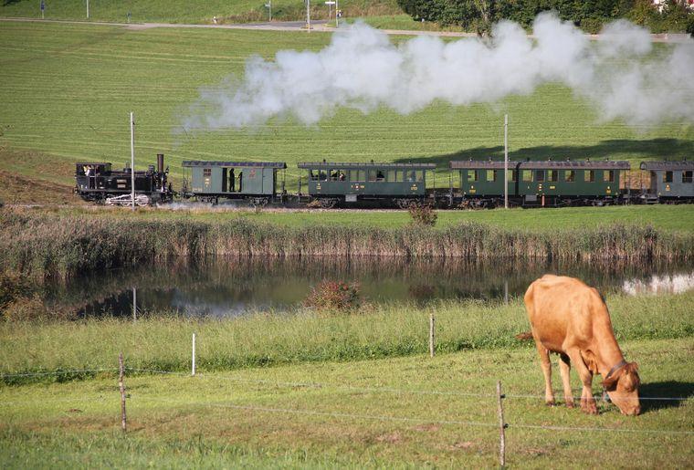 title= Dampfbahn Zürich 2013 Freizeit.ch Google.JPG
