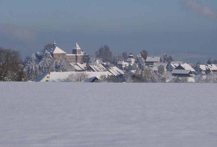 schloss Kyburg winter.JPG