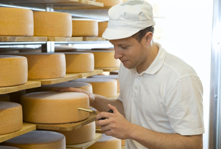 Alberswil_Agrovision_Käse.png