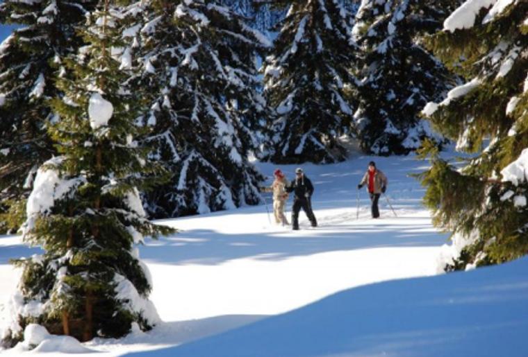 Buttes_La_Robella_Winter_Schnee_Schneeschuh_Laufen_Wanderung.png