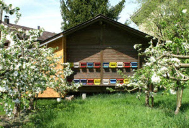 Bienenlehrpfad Pfäffikon SZ 4.jpg