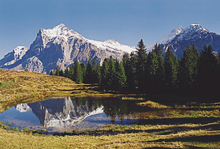 Interlaken_Grosse Scheidegg_Waldspitz.png