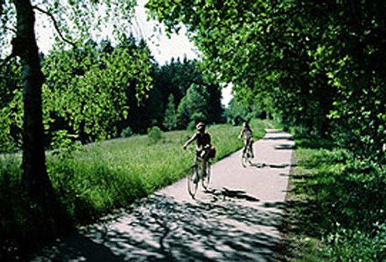 Rheinfall2.jpg