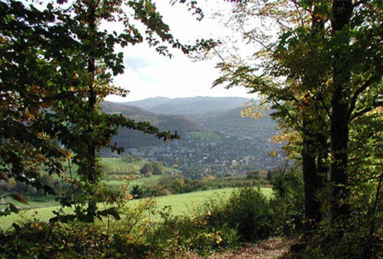 Sissach_Aussichtsplattform_Sissacherfluh_Herbstwanderung.jpg