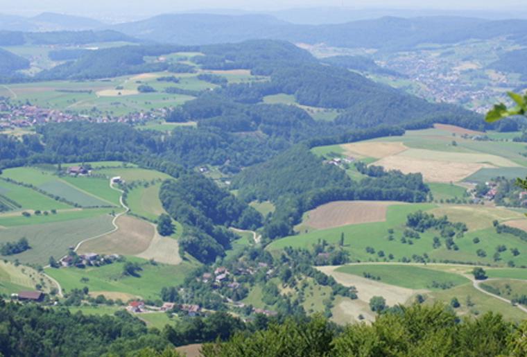 Ausscihtsturm_Weisenberg_Hafelingen_Panorama_Aussicht.png