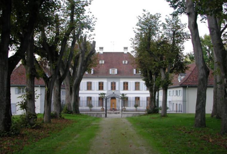 Schloss_Ebenrein_Suedeingang_Allee.png