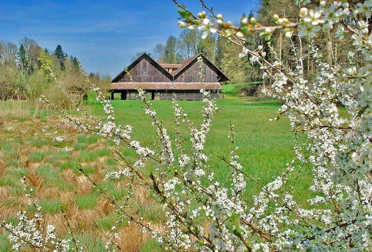 ZM_Ziegelhütte_1.jpg