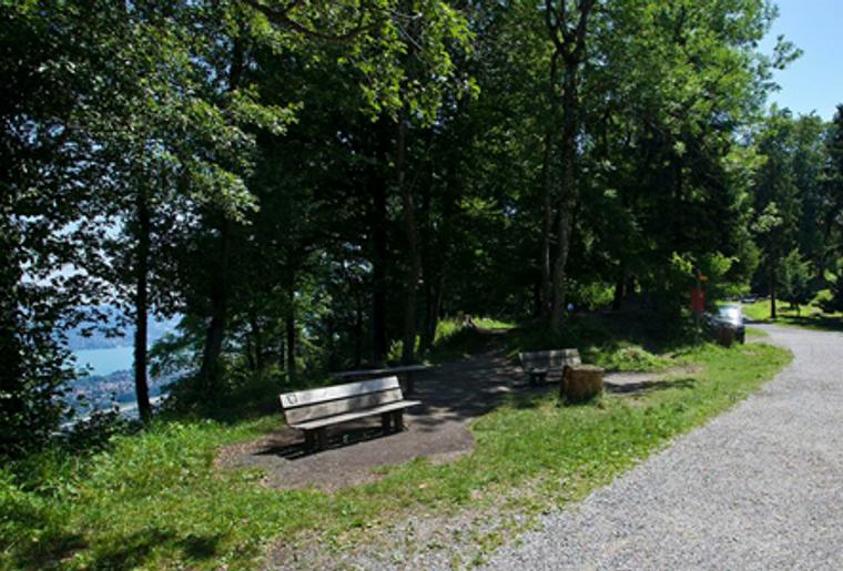 Uetliberg_Felsenegg_Zürich_Planetenweg_Wald_Bank.png