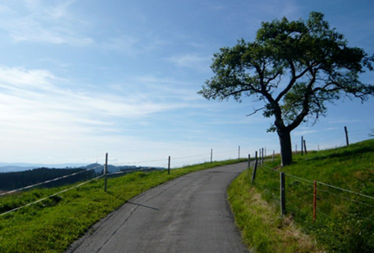 Burgdorf_Willisau_Herzroute_Strasse.png