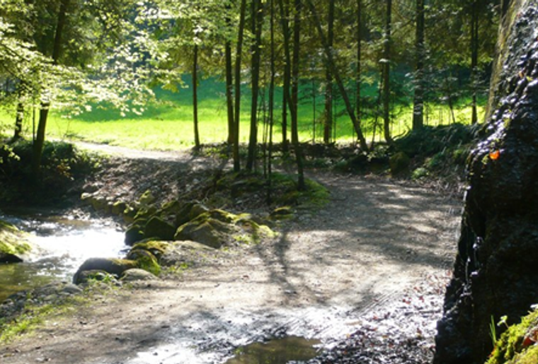 Burgdorf_Willisau_Herzroute_Weg_Bach.png