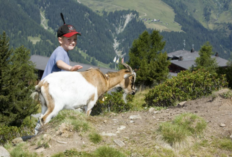 Davos_Klosters_Zugerberg_Kind_Geiss.png