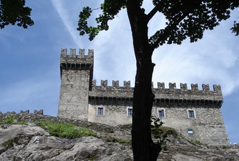Bellinzona_drei Burgen_Castello Sasso Corbano_Baum.png