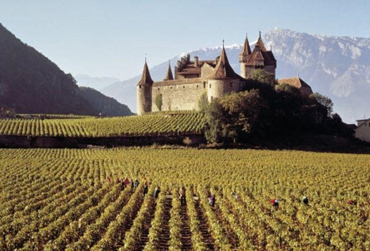 Schloss Aigle 5.jpg