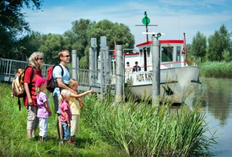 Rheindelta 5.jpg