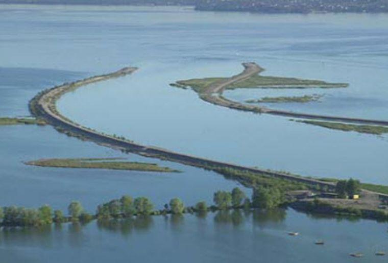 Rheindelta 7.jpg