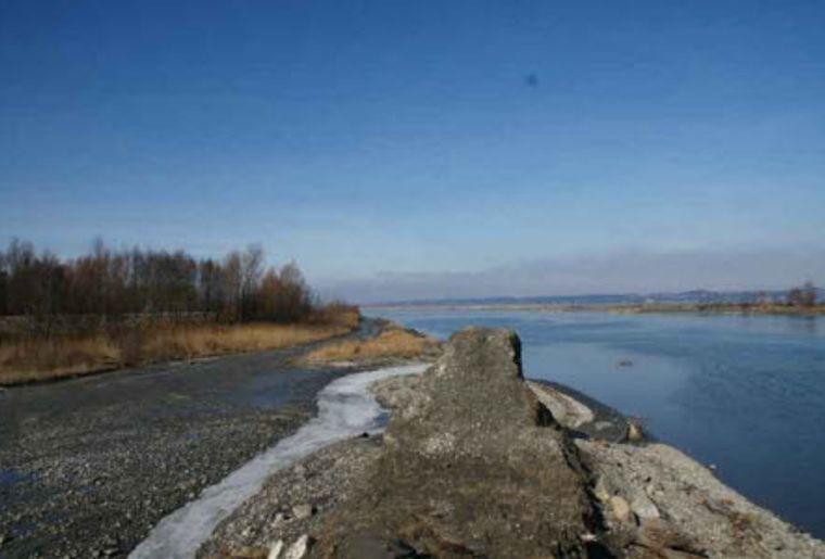 Rheindelta.jpg