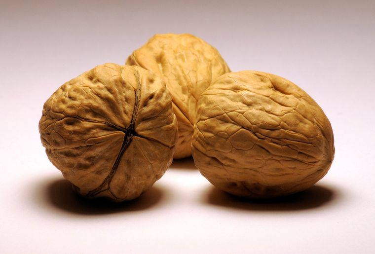 Walnuts_by_RustedStrings.jpg
