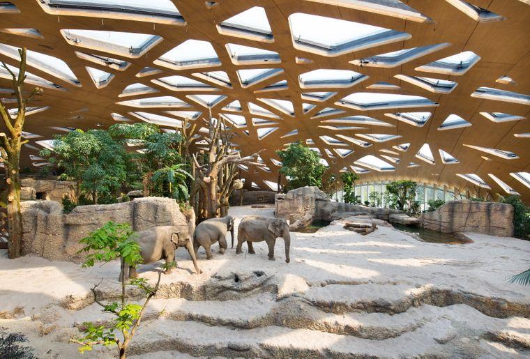 Elefantenpark Innensicht.jpg