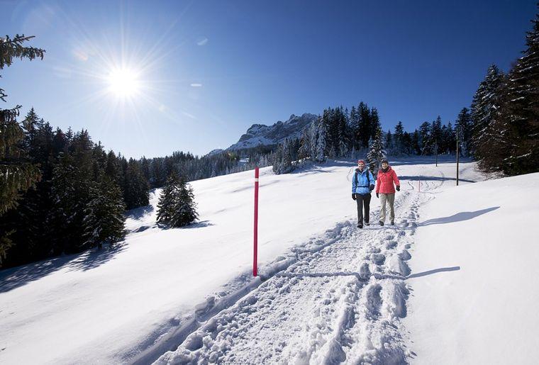 Pilatus-Winterwandern-3_0.jpg