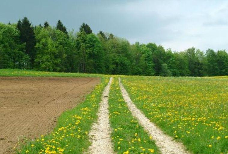 9540_default_landscape.jpg