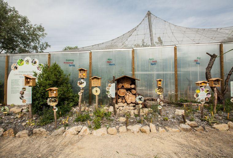 Bienenkalender II.jpg