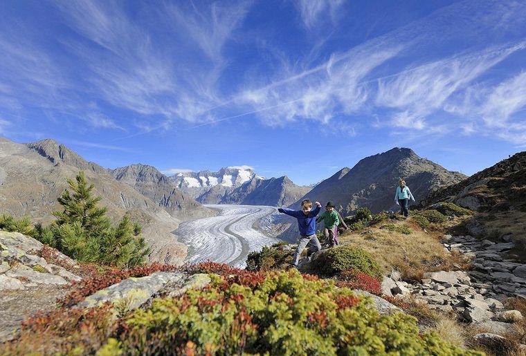 Aletschgletscher - Sommer in der Schweiz.jpg