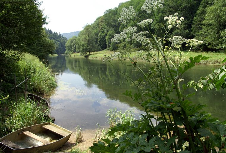 Doubs - Sommer in der Schweiz.jpg