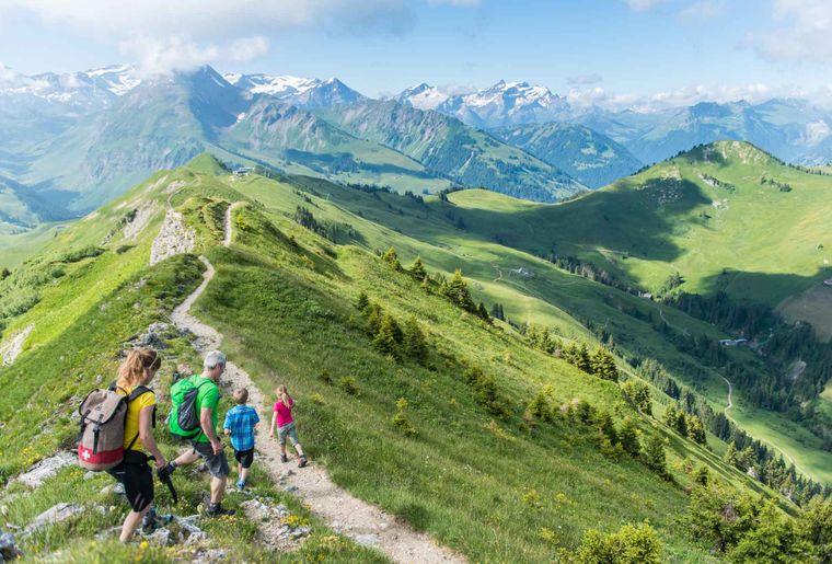 Rinderberg Horneggli - Sommer in der Schweiz.jpg