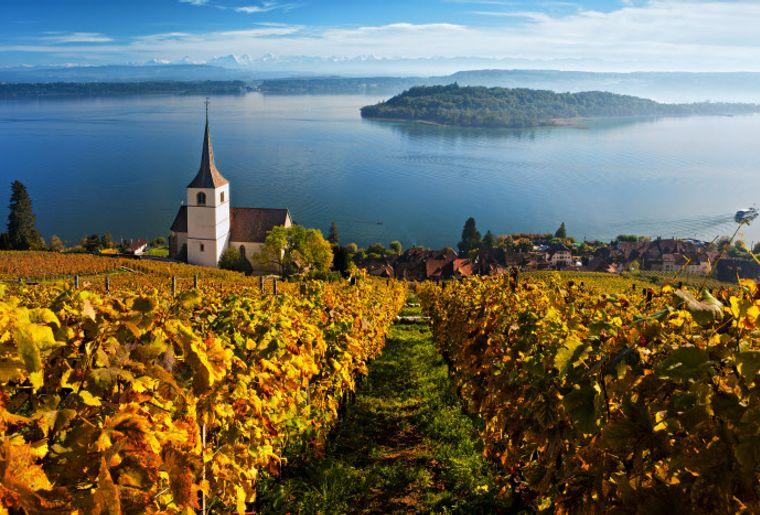 St. Petersinsel - Sommer in der Schweiz.jpg