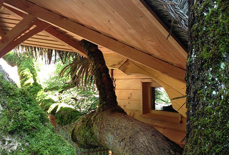 Wochenende zu Zweit Baumhäuser.jpg
