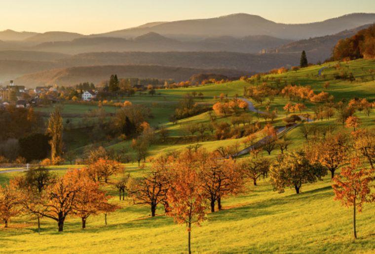 St. Pantaleon Solothurn low res - Herbst in der Schweiz.jpg