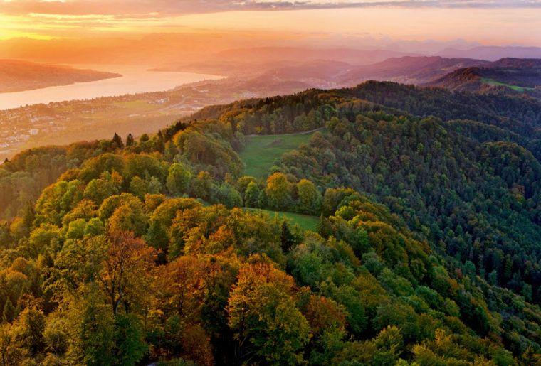 Sonnenaufgang auf dem Üetliberg - Herbst in der Schweiz.jpg