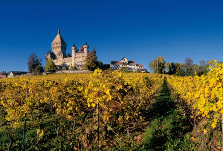 Schloss Vufflens im Weinbaugebiet der La Cote low res - Herbst in der Schweiz.jpg
