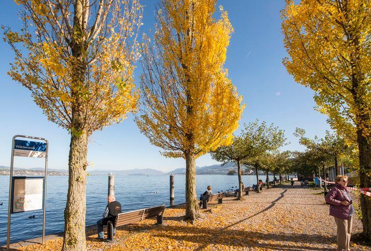 Zürich Seepromenade - Herbst in der Schweiz.jpg