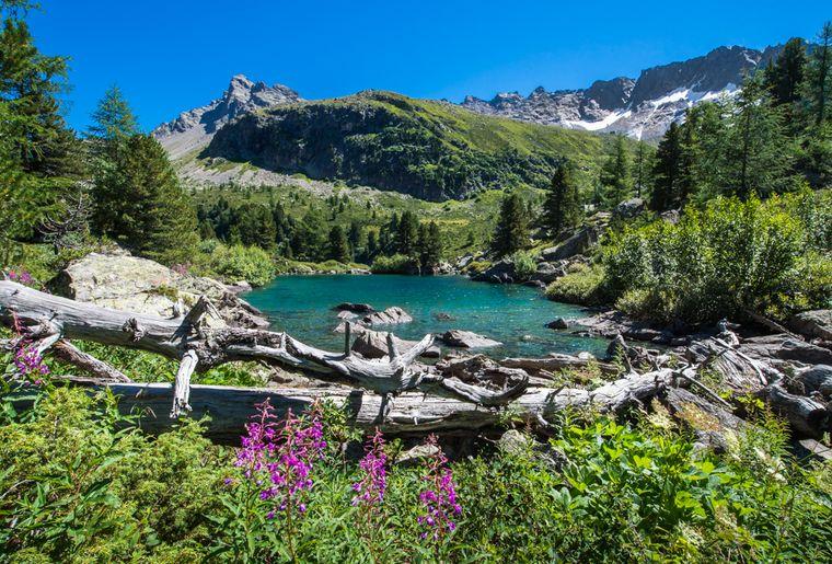 Lago-di-Viola.jpg