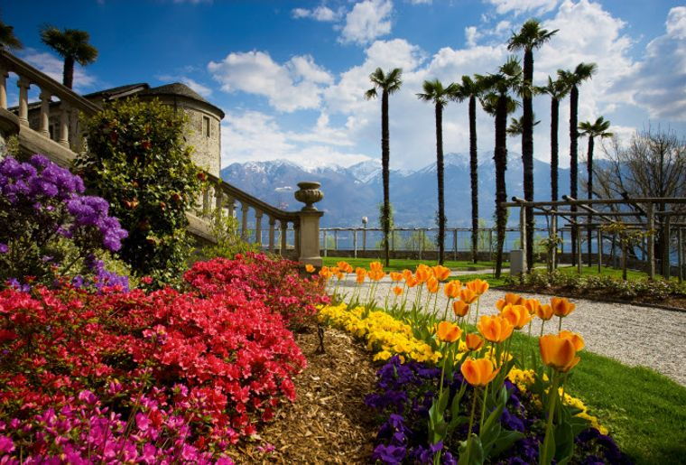 Fruehling in Minusio am Lago Maggiore, Kanton Tessin..jpg