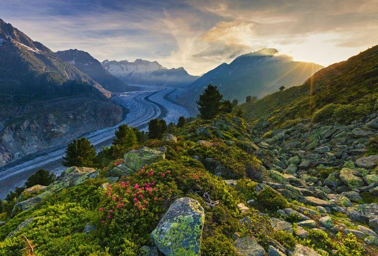Aletsch Gletscher Schweiz Tourismus.jpg