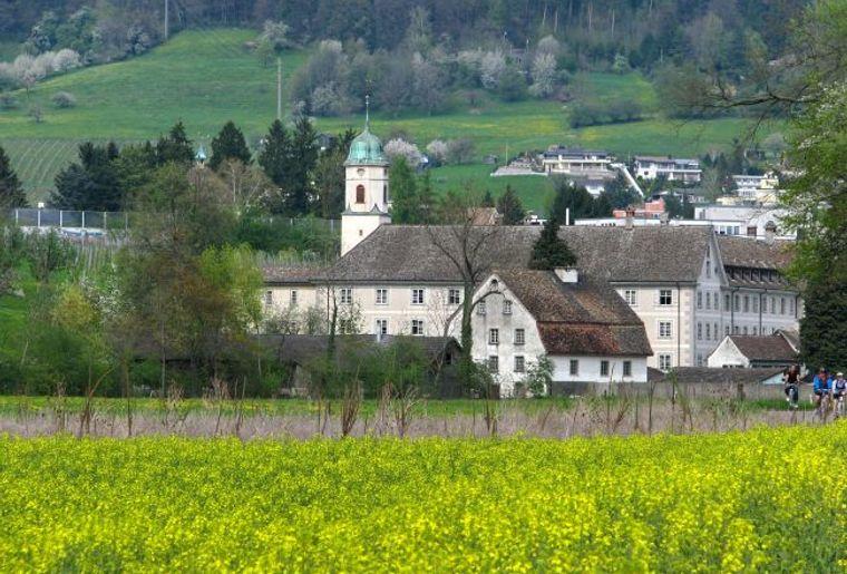 Kloster Fahr_Weiningen.jpg